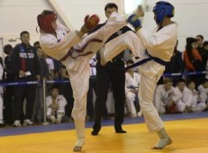 Одиннадцать бойцов из Шахт стали победителями и призёрами первенства ЮФО по рукопашному бою