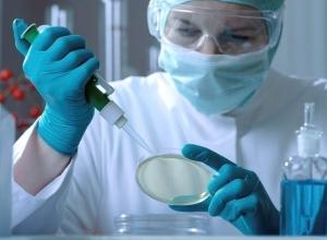 В Шахтах зарегистрировано 11 случаев сальмонеллеза