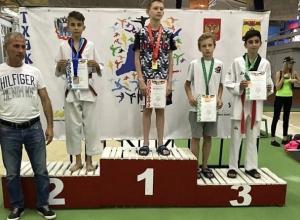 Восемь тхэквондистов из Шахт завоевали семь медалей на первенстве ЮФО и Ростовской области