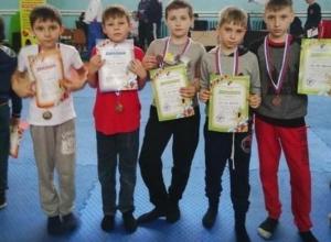 Восемь медалей завоевали на своих первых соревнованиях маленькие кикбоксеры из Шахт