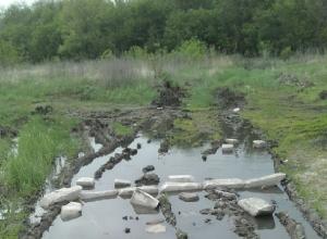 В болото превращается земля в посёлке Новая Азовка в Шахтах