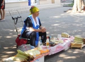 За торговлю в неположенных местах в Шахтах  выписано штрафов на 78 тысяч рублей