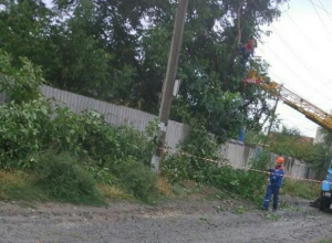 После обрезки деревьев шахтинские энергетики оставили кучи мусора