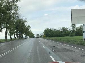 Шахтинцы возмущены вырубкой деревьев на въезде в город