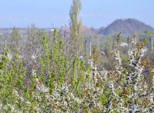 Яркое солнце и утренние заморозки ожидаются в Шахтах во вторник
