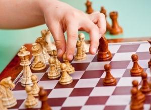Шахтинский шахматный клуб остался без финансирования