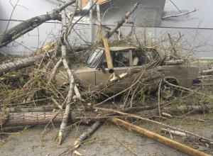 Дерево раздавило машину, оборвало провода и выбило стекла в здании в Шахтах
