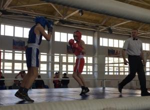 Всероссийский турнир по боксу начался в Шахтах