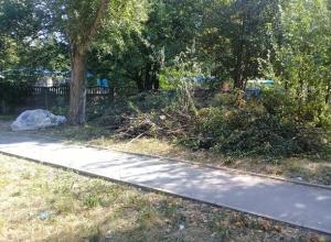 Шахтинцы сами убрали траву и ветки, и просят коммунальщиков только вывести мусор