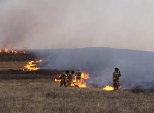 До 700 тысяч рублей составит штраф в Шахтах за выжигание сухой травы