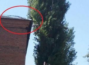 Сухая ветка лежит на крыше училища № 35 в Шахтах
