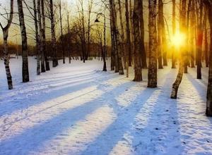 Ясная солнечная погода ждет Шахты в середине недели