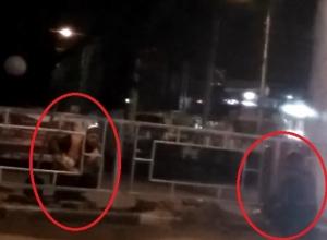 Под покровом ночи устанавливали ограды в центре Шахт