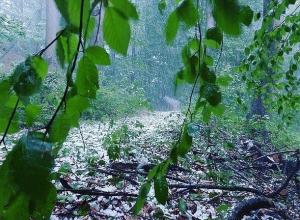 Ливень в сочетании с грозой, градом и шквалистым ветром ожидается в Шахтах