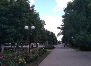 Петицию против застройки Александровского парка разместили жители Шахт