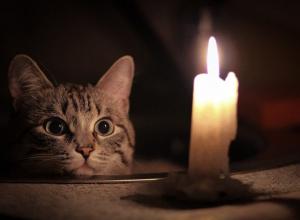 В понедельник десяток шахтинских улиц останутся без света