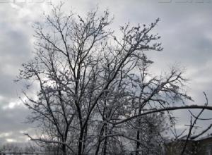 В Шахты пришла настоящая зима: в понедельник будет -10 и снег