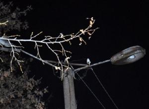Поселок Поповка в Шахтах остался без уличного освещения