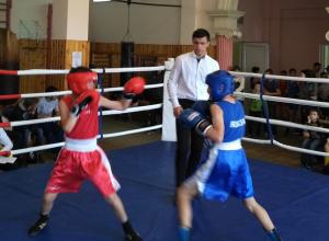 В первенстве города Шахты по боксу участвовало 138 спортсменов