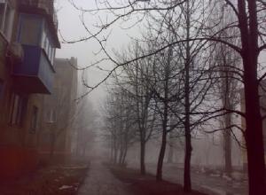 После теплого понедельника в Шахтах ударят морозы
