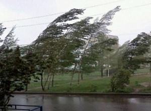 Шахтинцев предупреждают о ливне и шквалистом ветре