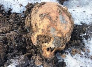 «В земле, привезенной со стройки в парке в Шахтах, обнаружили человеческие останки», - рассказал очевидец происшествия