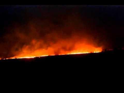 Недалеко от Шахт на трассе М-4 произошел крупный пожар