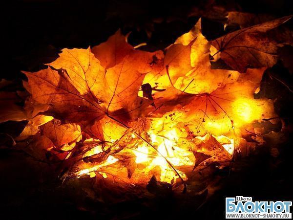 В Шахтах будут наказывать за сжигание листвы