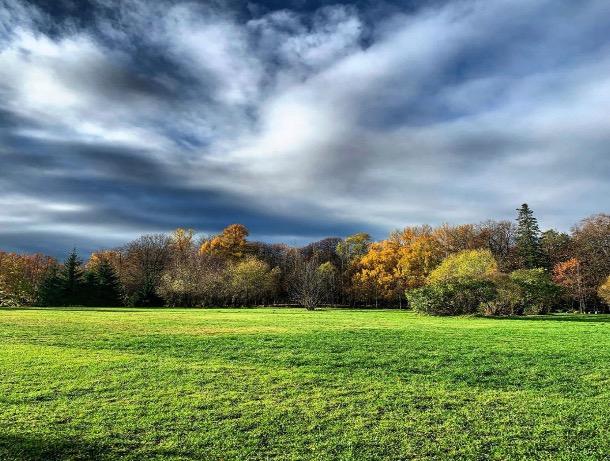«Последний рисунок осени»: погода в Шахтах