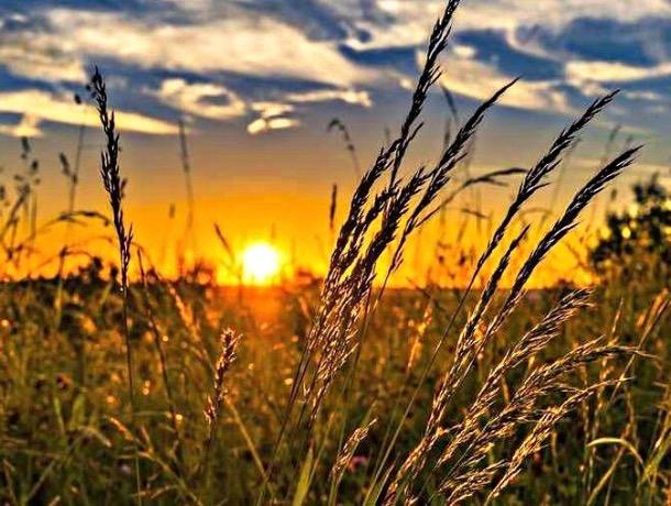 «Август повесил лето на гвоздь»: погода в Шахтах и немного астрономии