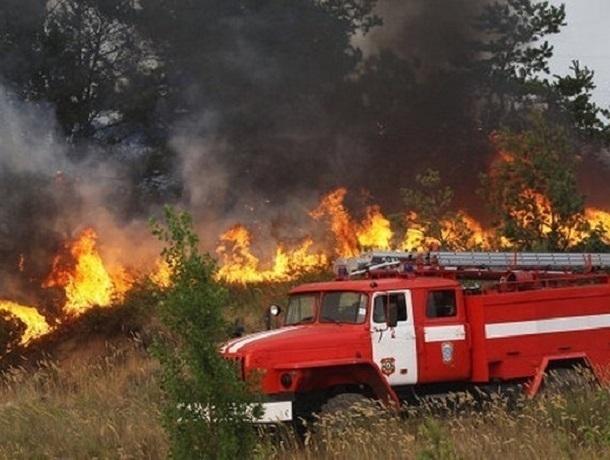Экстренное предупреждение о высокой пожароопасности поступило в Шахты