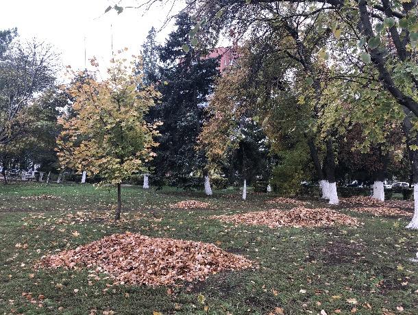 Городской субботник: все шахтинцы - на борьбу с листвой и грязью!