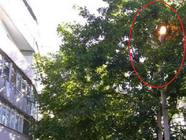 Светят днем и гаснут с заходом солнца фонари на Машиносчетной в Шахтах
