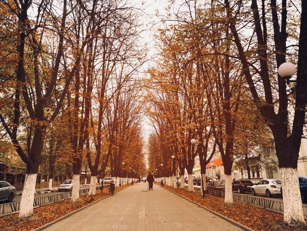 Осень - задумчивой грусти подруга: погода в Шахтах