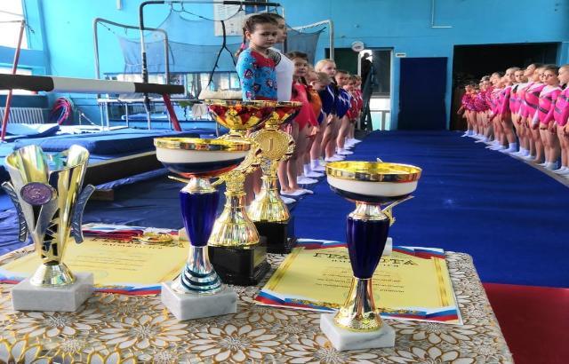 Маленьких шахтинских гимнасток хотят выселить из спортзала