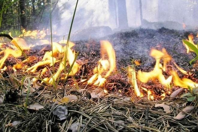 В Шахтах установлен особый противопожарный режим. Что это значит?