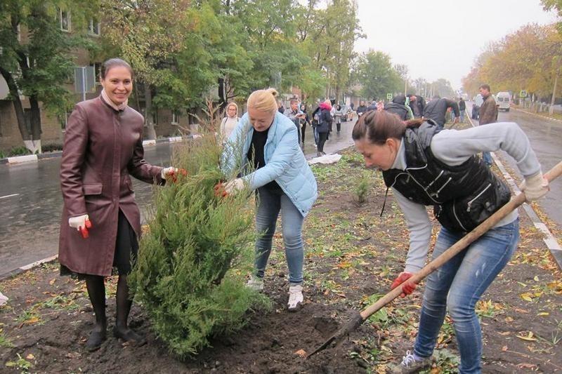 В ближайшие дни в Шахтах высадят около 750 новых деревьев и кустарников