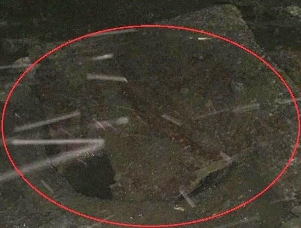 «Чуть не осталась без бампера и колеса», - возмущена шахтинка состоянием улицы Чернокозова