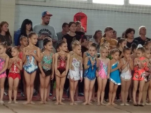 Красота и грация шахтинских гимнасток принесли команде 15 медалей